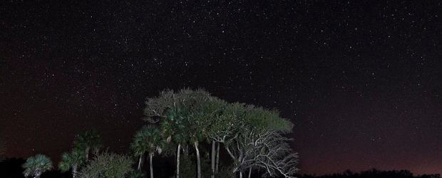 The night sky in the Kissimmee Prairie Preserve is ideal for stargazing. (Photo courtesy Dick Scott, rcscottphotography.com)