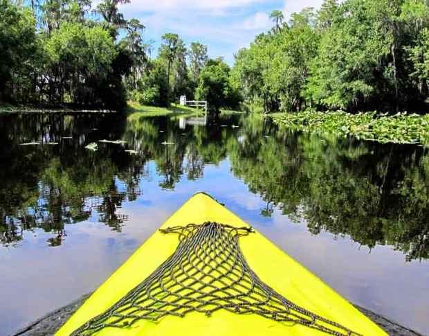 Paddling on Single Creek (Photo: Miosotis Jade via Wikimedia)