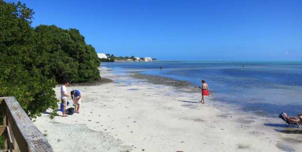 Anne's Beach in Islamorada exposes a wide swatch of sand at low tide. (Photo: Bonnie Gross)