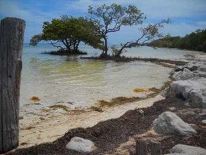 Anne's Beach in Islamorada