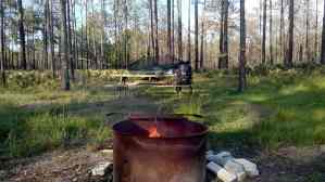Fire pit and grill at Colt Creek State Park