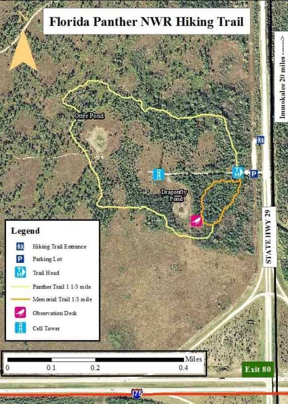 Florida Panther National Wildlife Refuge tral map