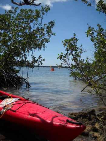 Kayaking to Indian Key in Islamorada
