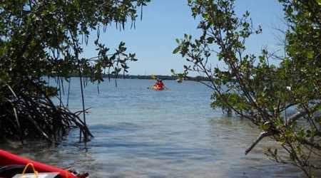 Kayaking to Indian Key in Islamorada (Photo: Bonnie Gross)
