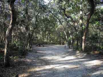 typical campsite at anastasia state park
