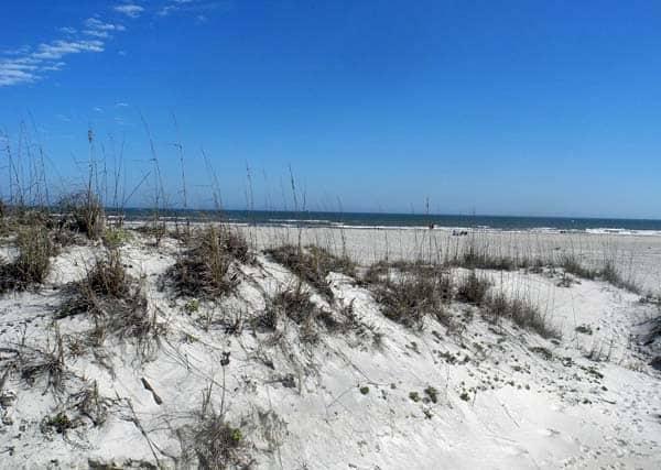 dunes at anastasia state park