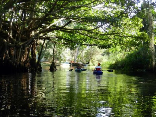 Imperial River kayak trip, Bonita Springs