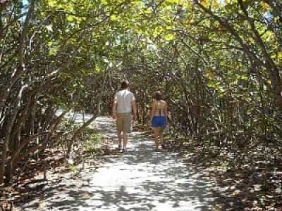 Trail at Blowing Rocks, Jupiter, Florida, beach