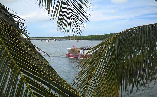 lobster boat florida keys