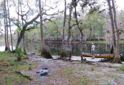 Primitive campsite where a paddler could choose to spend the night Fisheating Creek.