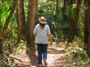 hiking in ocala national forest