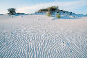 Dunes at Grayton Beach