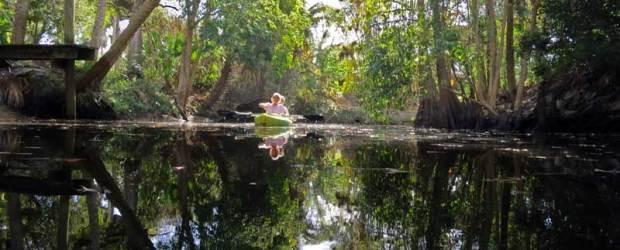 Kayaking Imperial River Bonita Springs