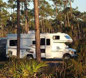 Long Pine Campground at Everglades National Park