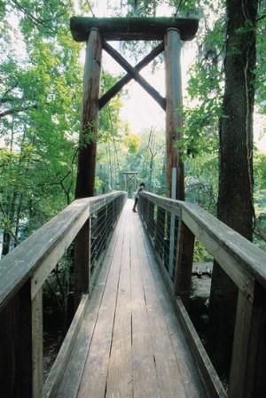 The swinging bridge at O'Leno State Park.