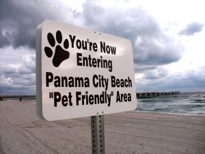 Doggie Beach Panama City