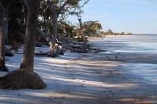 Bayside beach at St. Joseph Peninsula State Park