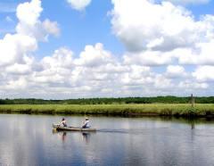 Canoeing at Tomoka State Park