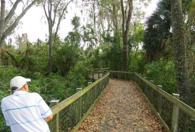 At Oakland Nature Preserve, a boardwalk leads to Lake Apopka. It's a good chance to stretch your legs.
