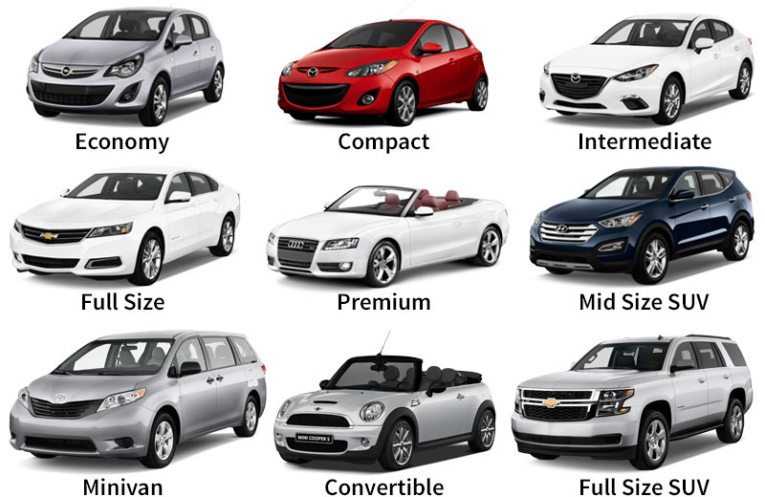 Florida Sun Car Rental   Florida Vehicle Fleet Rental car examples in Florida