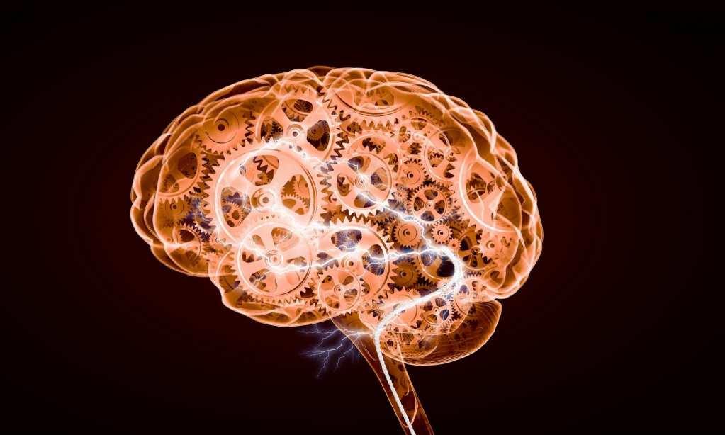 Traumatic Brain Injury Doctor