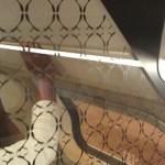 Pattern on glass separator on train