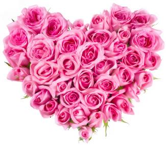 Resultat d'imatges de roses forma cor