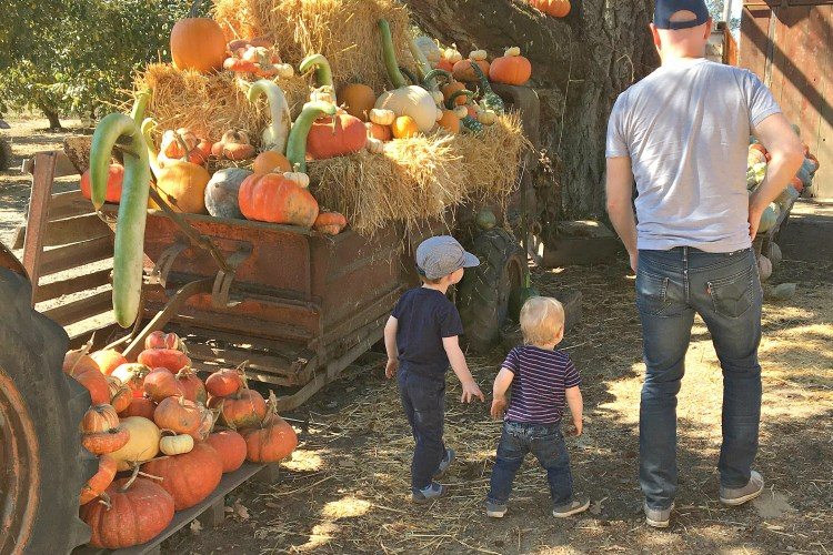 Creating Halloween Spirit with Preschoolers (or Adults) in the Bay Area