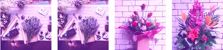 The 16 Best Options for Flower Delivery in Glasgow [2020]