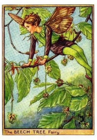 Mapman Page 3 Flower Fairy Prints
