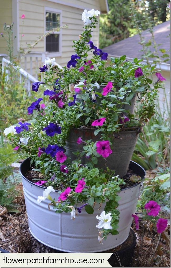 buckets of flowers 6