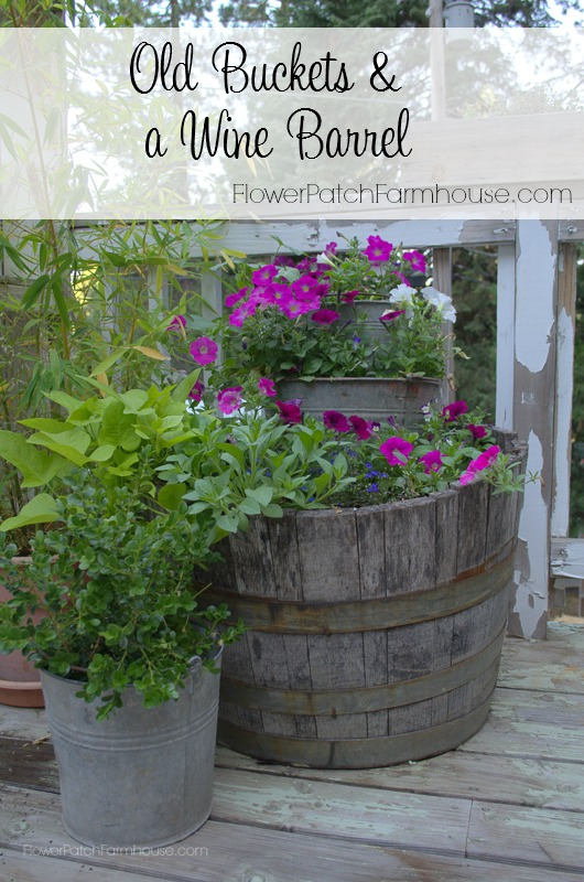 Plant yourslef some Old Buckets & a Wine Barrel. Come see a few ways I have planted these up. FlowerPatchFarmhouse