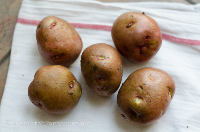 Melt in your Mouth Horseradish Mashed Potatoes, FlowerPatchFarmhouse.com