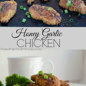 Honey Garlic chicken with brown rice, FlowerPatchFarmhouse.com
