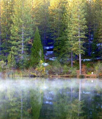 White Pines Lake, FlowerPatch Farmhouse.com