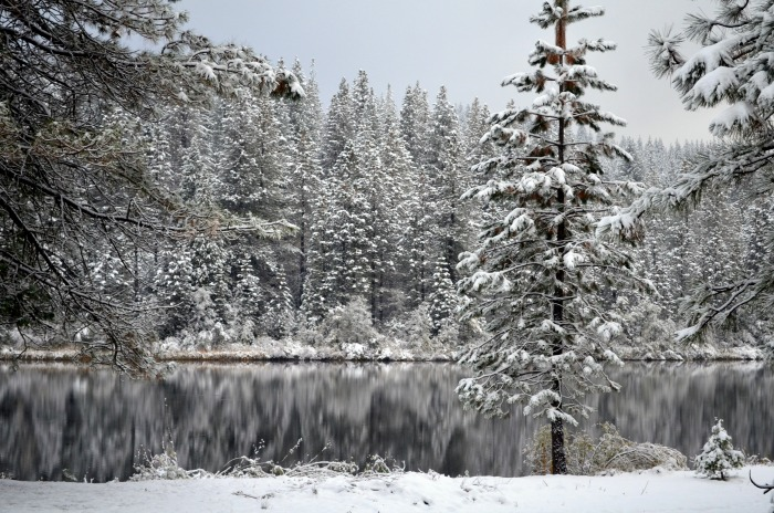 White Pines lake winter, FlowerPatchFarmhouse.com