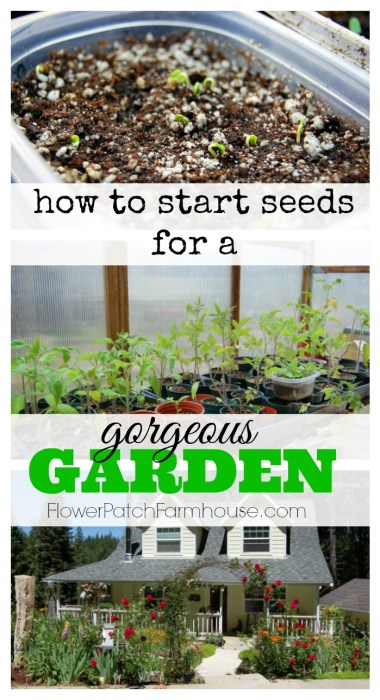 How to Start Seeds for a Gorgeous Garden, FlowerPatchFarmhouse.com