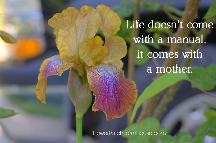 Llife doesn't come with a manual, it comes with a mother. FlowerPatchFarmhouse.com