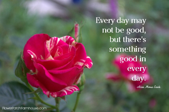 Every day may not be good but there is godd in every day inspirational quote, FlowerPatchFarmhouse.com