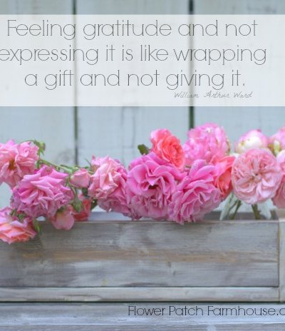 Feeling Gratitude Inspirational Quote
