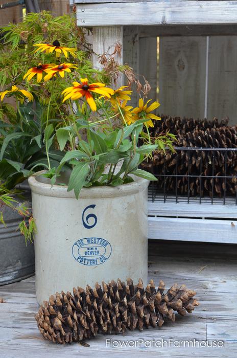 Sugar Pine Cone with vintage Crock, FlowerPatchFarmhouse.com