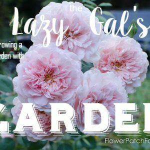 The Lazy Gal's Garden, a guide to growing a beautiful garden with little time