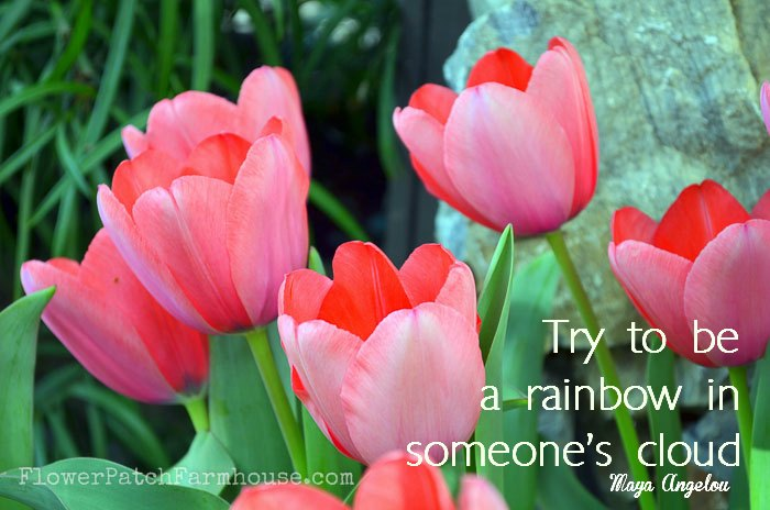 Try to be a rainbow in someone's cloud inspiration, FlowerPatchFarmhouse.com
