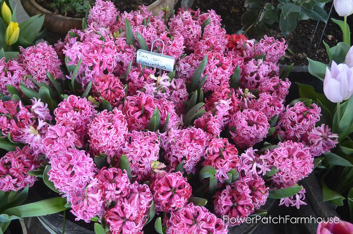 Ironstone March 2016, FlowerPatchFarmhouse.com (63 of 77)