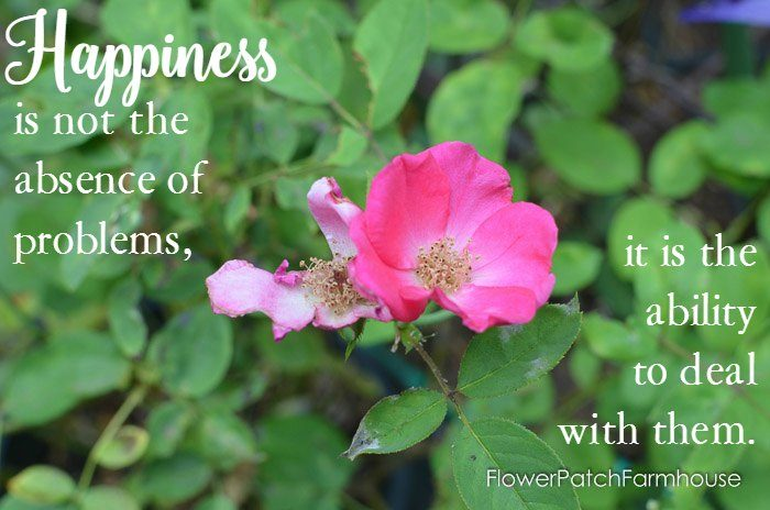 Happiness is not the absence of problems