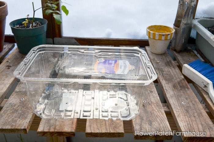 Winter sowing of seeds, when you are sick of the snow and want to plant!