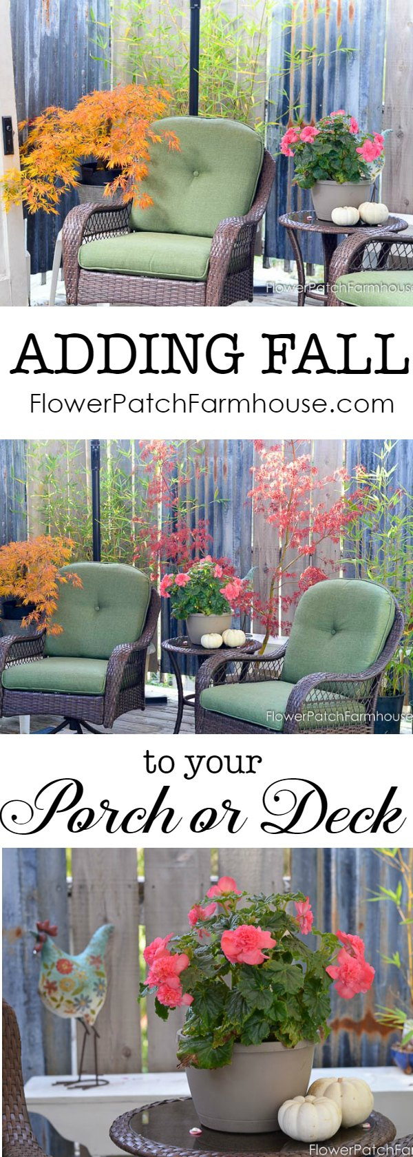 Add Fall to your #porch or deck easily.  See how this deck went from Summer to #Fall in a few moments.  All for under $6.  Easy #FallDecor, budget friendly, low stress but all the beauty!