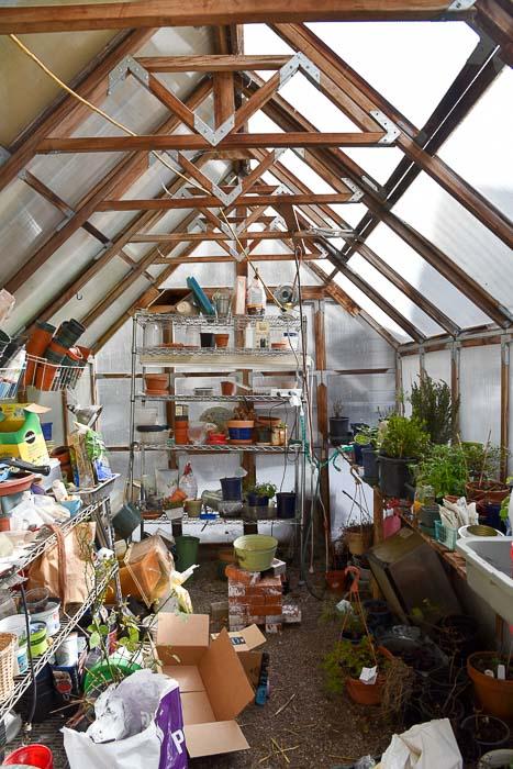 Greenhouse interior March 2018