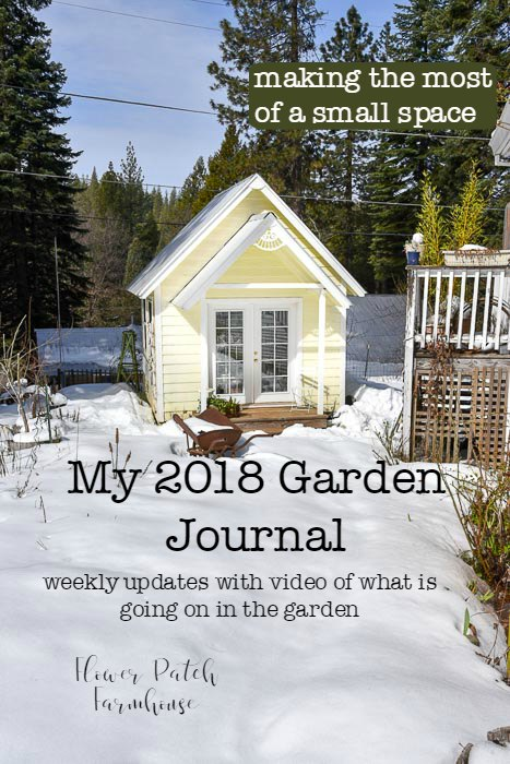 My Garden Journal of 2018. Video and photo posts of what is happening in my garden every week.  Watch how this small space transform as the seasons change. Great small garden ideas, tips and tricks for every gardener!