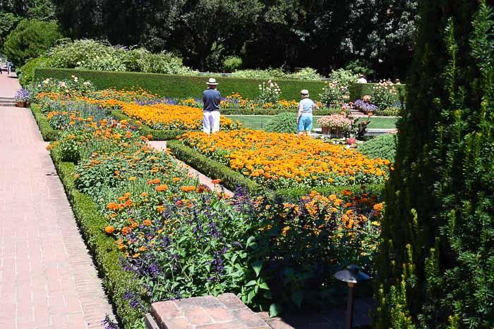 Sunken garden at Filoli.
